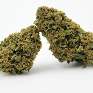 Decemberpaketet 5 sorter Premium Buds
